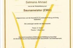 Saunameister
